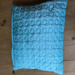Aqua circle cushion covers